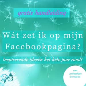 handleiding Facebook